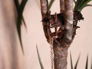 http://jacintajardine.com/files/gimgs/th-5_treehouse.jpg